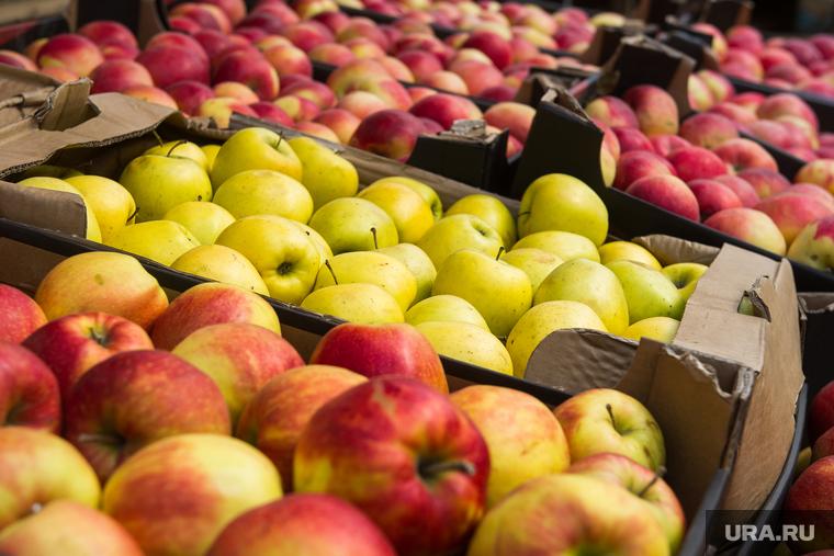 фото яблоки Белорусь санкции
