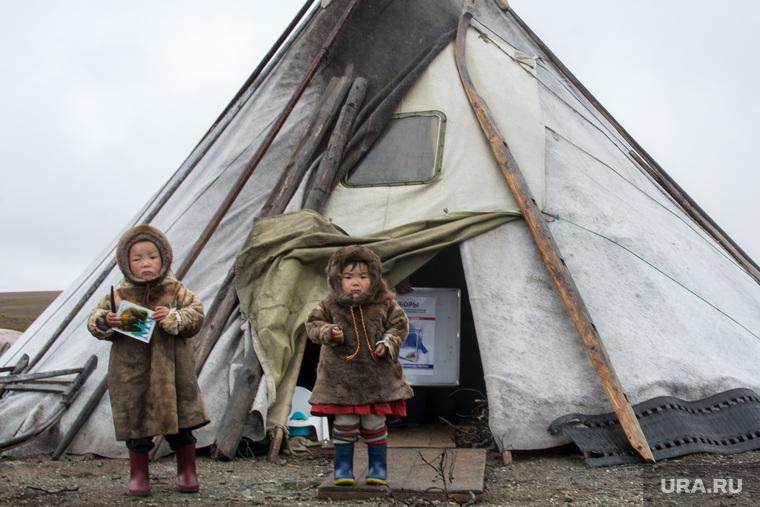 ЯНАО. Тундра + досрочные выборы, чум, ненцы, дети, ребенок, кмнс