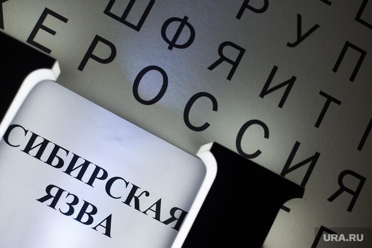 Суд Владивостока взыскал с14-летней школьницы 35 млн руб.