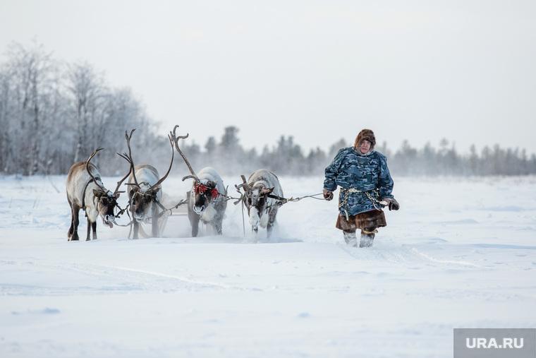 Салехард готовиться встретить участников Форума коренных народов Севера